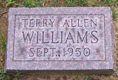 WILLIAMS, TERRY ALLEN - Stark County, Ohio   TERRY ALLEN WILLIAMS - Ohio Gravestone Photos