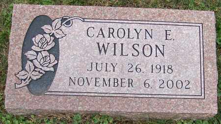 WILSON, CAROLYN E. - Stark County, Ohio | CAROLYN E. WILSON - Ohio Gravestone Photos