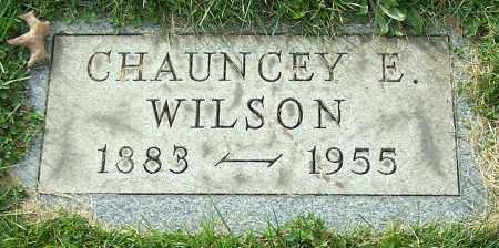 WILSON, CHAUNCEY E. - Stark County, Ohio | CHAUNCEY E. WILSON - Ohio Gravestone Photos
