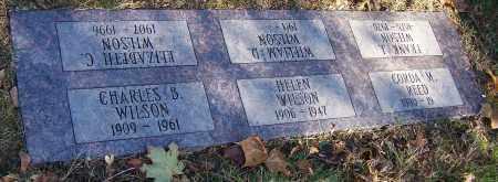 WILSON, HELEN - Stark County, Ohio | HELEN WILSON - Ohio Gravestone Photos