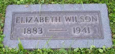 WILSON, ELIZABETH - Stark County, Ohio | ELIZABETH WILSON - Ohio Gravestone Photos
