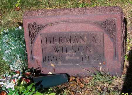WILSON, HERMAN A. - Stark County, Ohio | HERMAN A. WILSON - Ohio Gravestone Photos