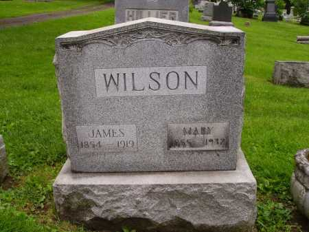 DAVIS WILSON, MARY - Stark County, Ohio | MARY DAVIS WILSON - Ohio Gravestone Photos