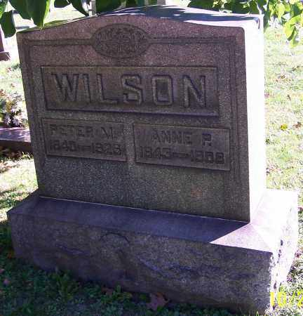 WILSON, PETER M. - Stark County, Ohio | PETER M. WILSON - Ohio Gravestone Photos