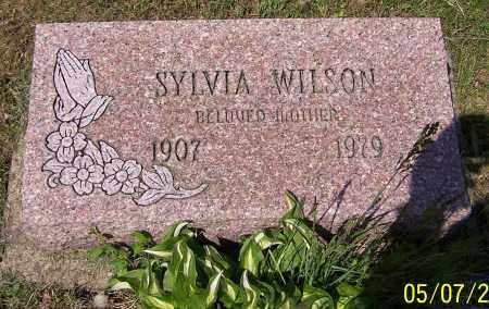 WILSON, SYLVIA - Stark County, Ohio | SYLVIA WILSON - Ohio Gravestone Photos