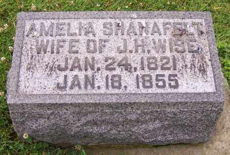 SHANAFELT WISE, AMELIA - Stark County, Ohio | AMELIA SHANAFELT WISE - Ohio Gravestone Photos