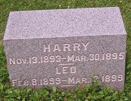 WISE, HARRY - Stark County, Ohio | HARRY WISE - Ohio Gravestone Photos