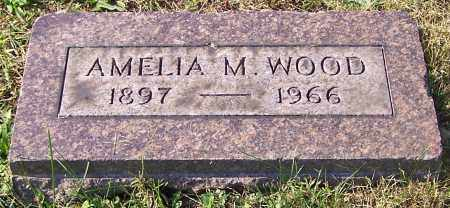 WOOD, AMELIA M. - Stark County, Ohio | AMELIA M. WOOD - Ohio Gravestone Photos