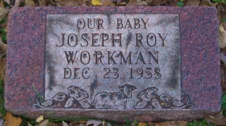 WORKMAN, JOSEPH ROY - Stark County, Ohio | JOSEPH ROY WORKMAN - Ohio Gravestone Photos
