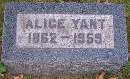 YANT, ALICE - Stark County, Ohio | ALICE YANT - Ohio Gravestone Photos