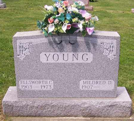 YOUNG, ELLSWORTH C. - Stark County, Ohio | ELLSWORTH C. YOUNG - Ohio Gravestone Photos