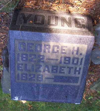 YOUNG, GEORGE H. - Stark County, Ohio | GEORGE H. YOUNG - Ohio Gravestone Photos