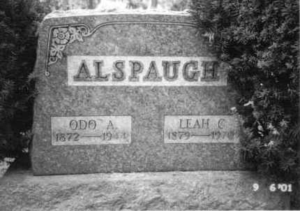 ALSPAUGH, ODO A. - Summit County, Ohio | ODO A. ALSPAUGH - Ohio Gravestone Photos