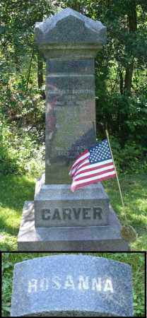 CARVER, ROSANNNA - Summit County, Ohio | ROSANNNA CARVER - Ohio Gravestone Photos