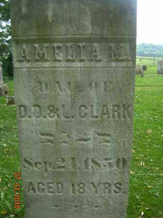 CLARK, AMELIA M - Summit County, Ohio | AMELIA M CLARK - Ohio Gravestone Photos