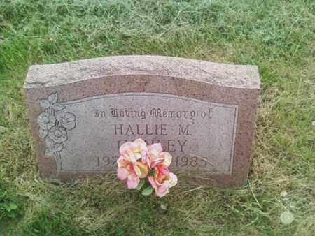 CONLEY, HALLIE - Summit County, Ohio | HALLIE CONLEY - Ohio Gravestone Photos