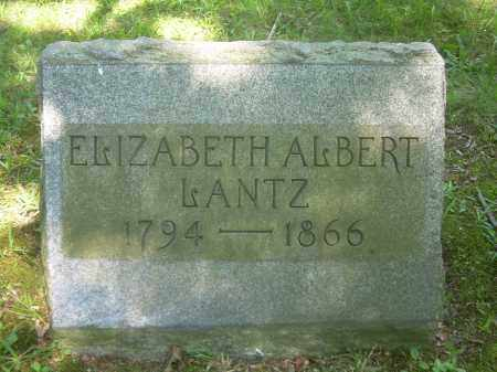 LANTZ, ELIZABETH - Summit County, Ohio | ELIZABETH LANTZ - Ohio Gravestone Photos