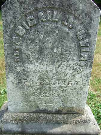 HUDSON OVIATT, ABIGAIL LAURA - Summit County, Ohio | ABIGAIL LAURA HUDSON OVIATT - Ohio Gravestone Photos