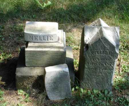 PORTER, NELLIE M - Summit County, Ohio   NELLIE M PORTER - Ohio Gravestone Photos