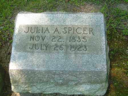 SPICER, JULIA A - Summit County, Ohio | JULIA A SPICER - Ohio Gravestone Photos