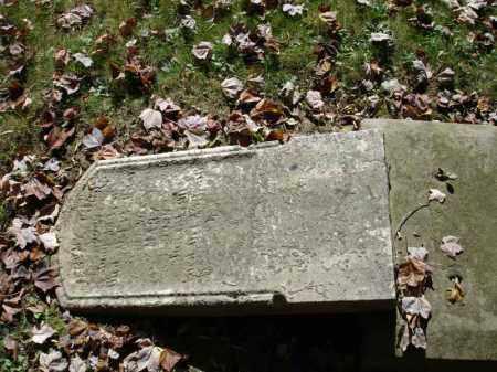 THORP, JEREMY - Summit County, Ohio | JEREMY THORP - Ohio Gravestone Photos