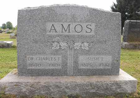 AMOS, SUSIE LOUISA - Trumbull County, Ohio | SUSIE LOUISA AMOS - Ohio Gravestone Photos