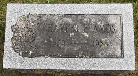 AMOS, CHARLES F., JR. - Trumbull County, Ohio | CHARLES F., JR. AMOS - Ohio Gravestone Photos