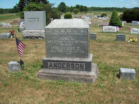 ANDERSON, FREELOVE A. - Trumbull County, Ohio | FREELOVE A. ANDERSON - Ohio Gravestone Photos