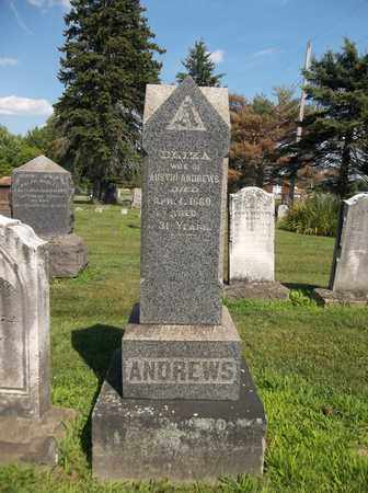 WATERS ANDREWS, ELIZA - Trumbull County, Ohio | ELIZA WATERS ANDREWS - Ohio Gravestone Photos