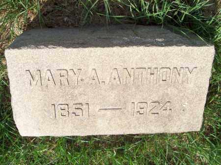 ANTHONY, MARY ADALINE - Trumbull County, Ohio | MARY ADALINE ANTHONY - Ohio Gravestone Photos
