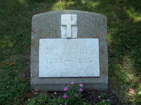 BADANJEK, MARY - Trumbull County, Ohio | MARY BADANJEK - Ohio Gravestone Photos