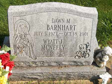 BARNHART, DAWN M. - Trumbull County, Ohio | DAWN M. BARNHART - Ohio Gravestone Photos