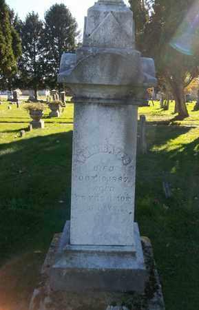 BATES, WILLIAM M. - Trumbull County, Ohio | WILLIAM M. BATES - Ohio Gravestone Photos
