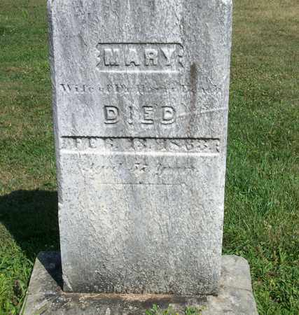 BEACH, MARY - Trumbull County, Ohio | MARY BEACH - Ohio Gravestone Photos