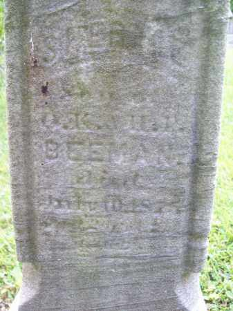 BEEMAN, SHERMIE - Trumbull County, Ohio | SHERMIE BEEMAN - Ohio Gravestone Photos