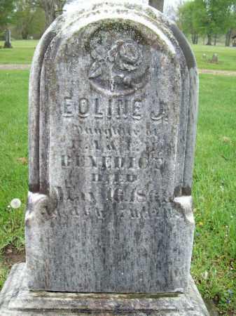 BENEDICT, EOLINE - Trumbull County, Ohio | EOLINE BENEDICT - Ohio Gravestone Photos