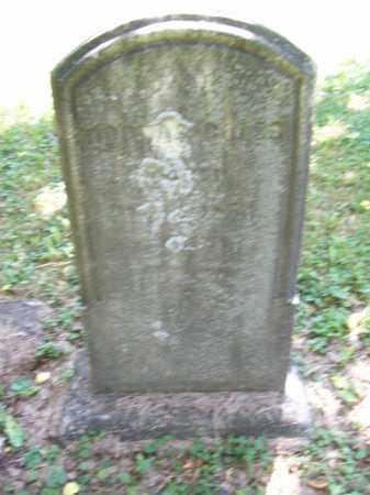 BOLES, DORCAS - Trumbull County, Ohio | DORCAS BOLES - Ohio Gravestone Photos