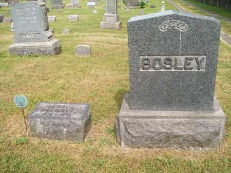 BOSLEY, LEROY E. - Trumbull County, Ohio | LEROY E. BOSLEY - Ohio Gravestone Photos