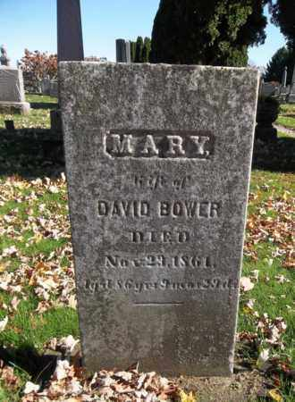 BOWER, MARY - Trumbull County, Ohio | MARY BOWER - Ohio Gravestone Photos