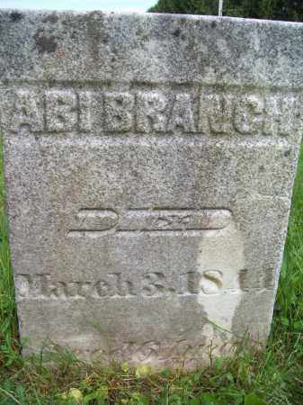 BRANCH, ABIGAIL - Trumbull County, Ohio | ABIGAIL BRANCH - Ohio Gravestone Photos