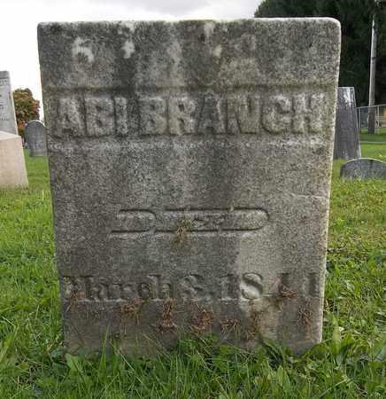 BRANCH, ABI - Trumbull County, Ohio | ABI BRANCH - Ohio Gravestone Photos