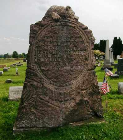BRIGDEN, GEORGE H. - Trumbull County, Ohio | GEORGE H. BRIGDEN - Ohio Gravestone Photos