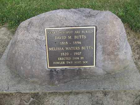 BUTTS, DAVID M. - Trumbull County, Ohio | DAVID M. BUTTS - Ohio Gravestone Photos