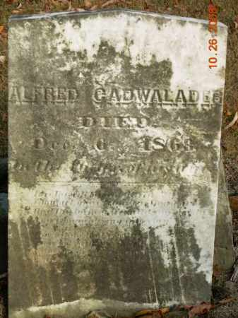 CADWALADER, ALFRED - Trumbull County, Ohio | ALFRED CADWALADER - Ohio Gravestone Photos