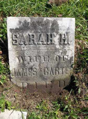 CARTER, SARAH H. - Trumbull County, Ohio | SARAH H. CARTER - Ohio Gravestone Photos