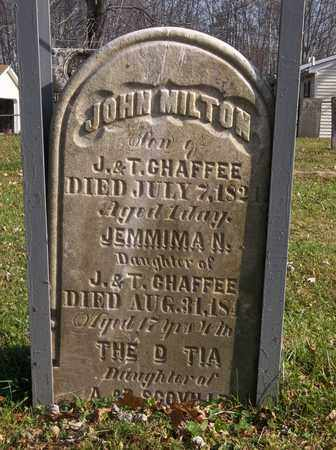 CHAFFEE, THEODOTIA - Trumbull County, Ohio | THEODOTIA CHAFFEE - Ohio Gravestone Photos