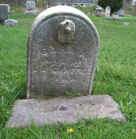 CHAFFEE, SARA - Trumbull County, Ohio | SARA CHAFFEE - Ohio Gravestone Photos