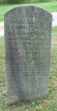 CASE CHAFFEE, SALOME - Trumbull County, Ohio | SALOME CASE CHAFFEE - Ohio Gravestone Photos