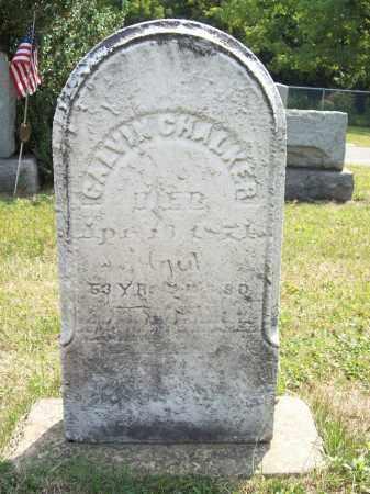 CHALKER, CALVIN - Trumbull County, Ohio   CALVIN CHALKER - Ohio Gravestone Photos
