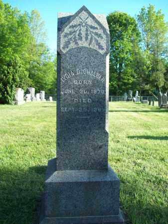 CHALKER, LYDIA D. - Trumbull County, Ohio   LYDIA D. CHALKER - Ohio Gravestone Photos